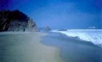 gold of mexico beach